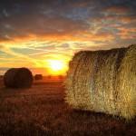 Lever de soleil normand  © Julien Cornette
